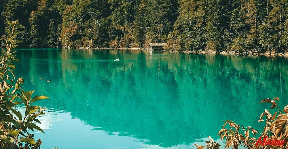 ルートヴィヒ2世の廃位。今なお謎を残すシュタルンベルク湖の事件